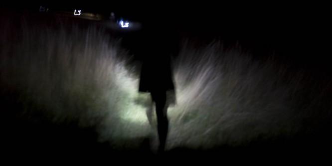Shirley Pegna's Pulsar Walk
