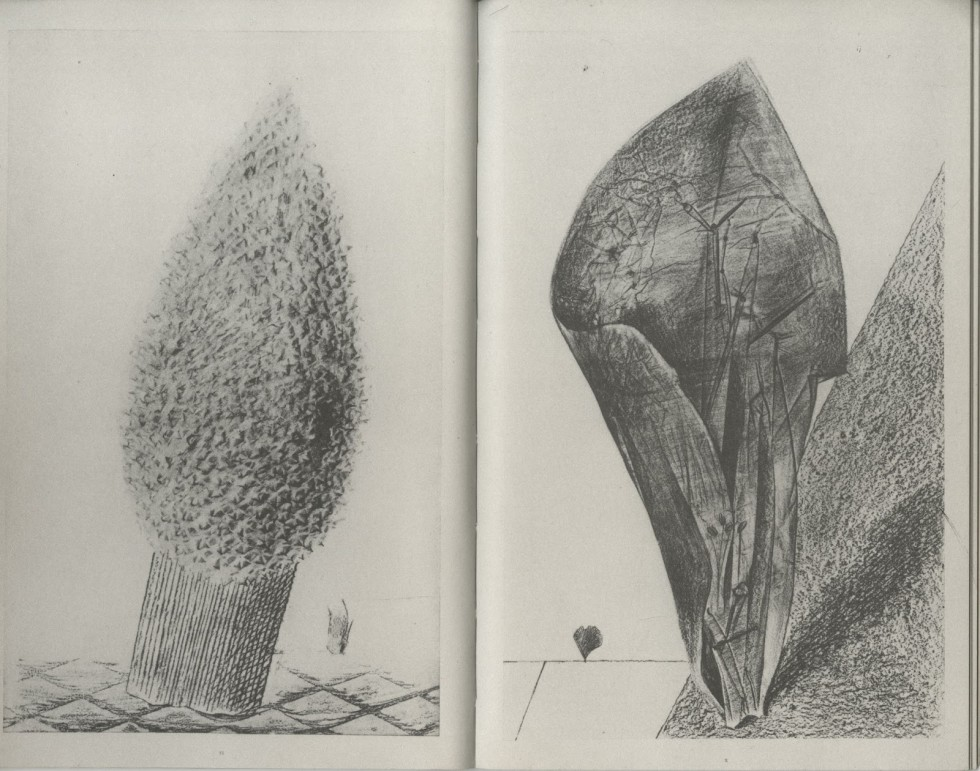 Max Ernst - Natural History 14