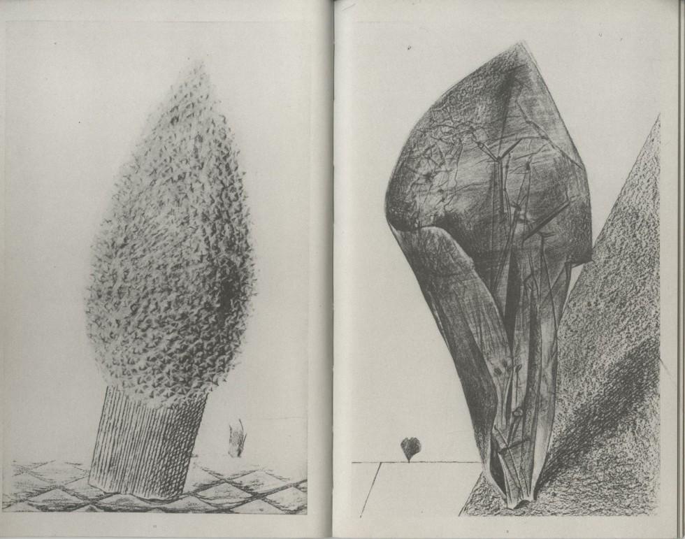 Max Ernst - Natural History 14