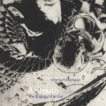 Azimuth, the Ecology of an Ear, Pre-Order
